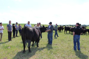 Alberta Meat Lab/Ranch June 2015, Making the grade, portion control & tenderness, understanding the carcass, It's a cowboy's life