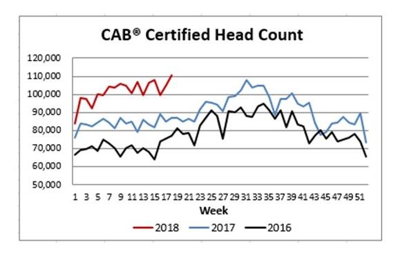 CAB Certified Head 5-17-18 (003)b