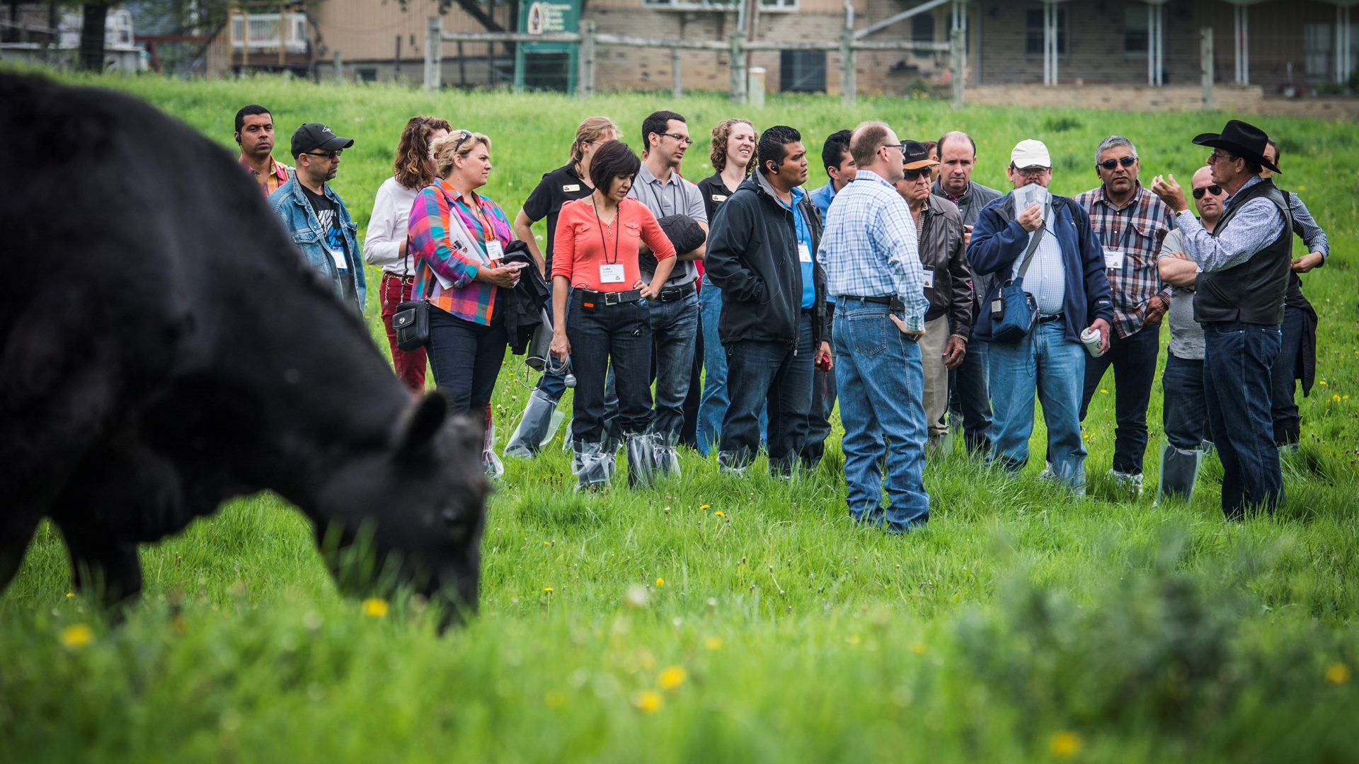 Record beef exports despite trade challenges