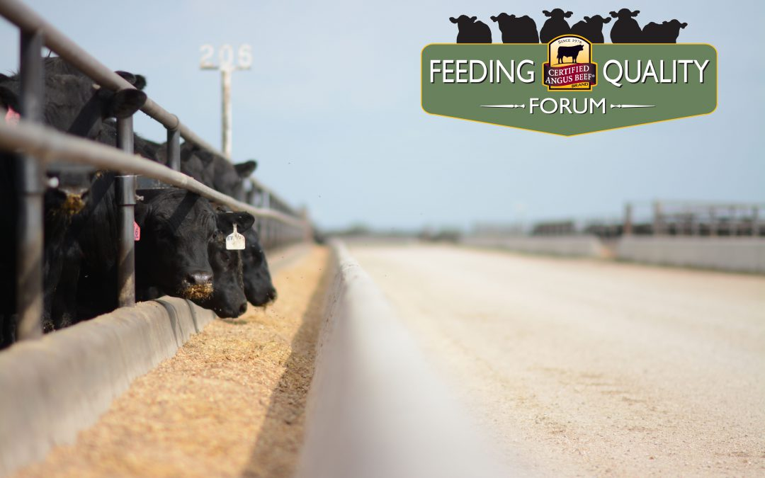 Registration opens for Feeding Quality Forum webinar