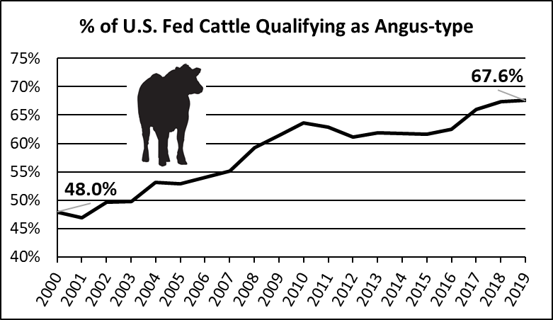 US Angus-type fed cattle