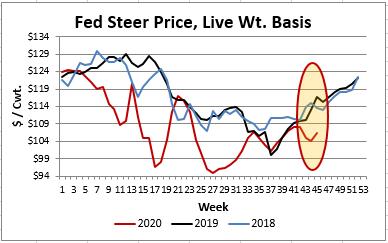 fed steer price
