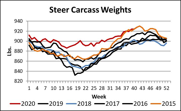 steer carcass weights