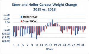 steer and heifer carcass weight change