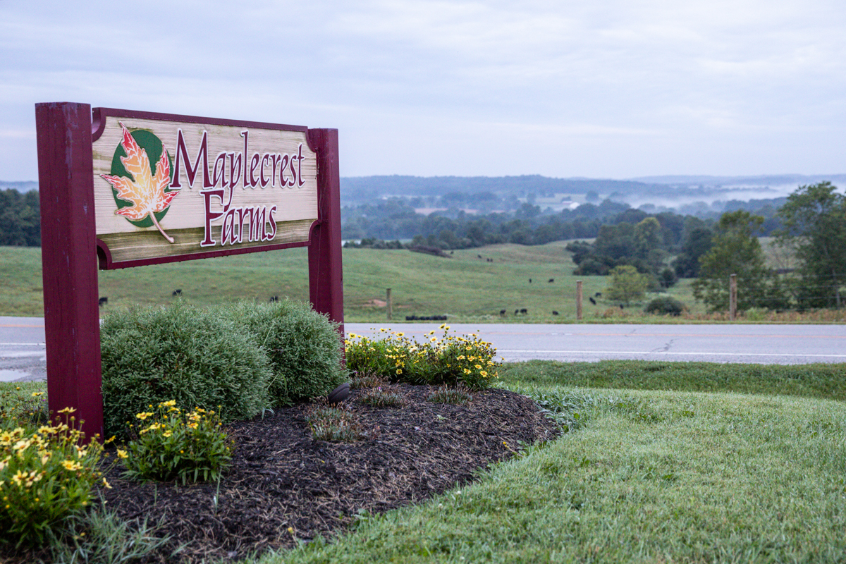 Maplecrest Farms