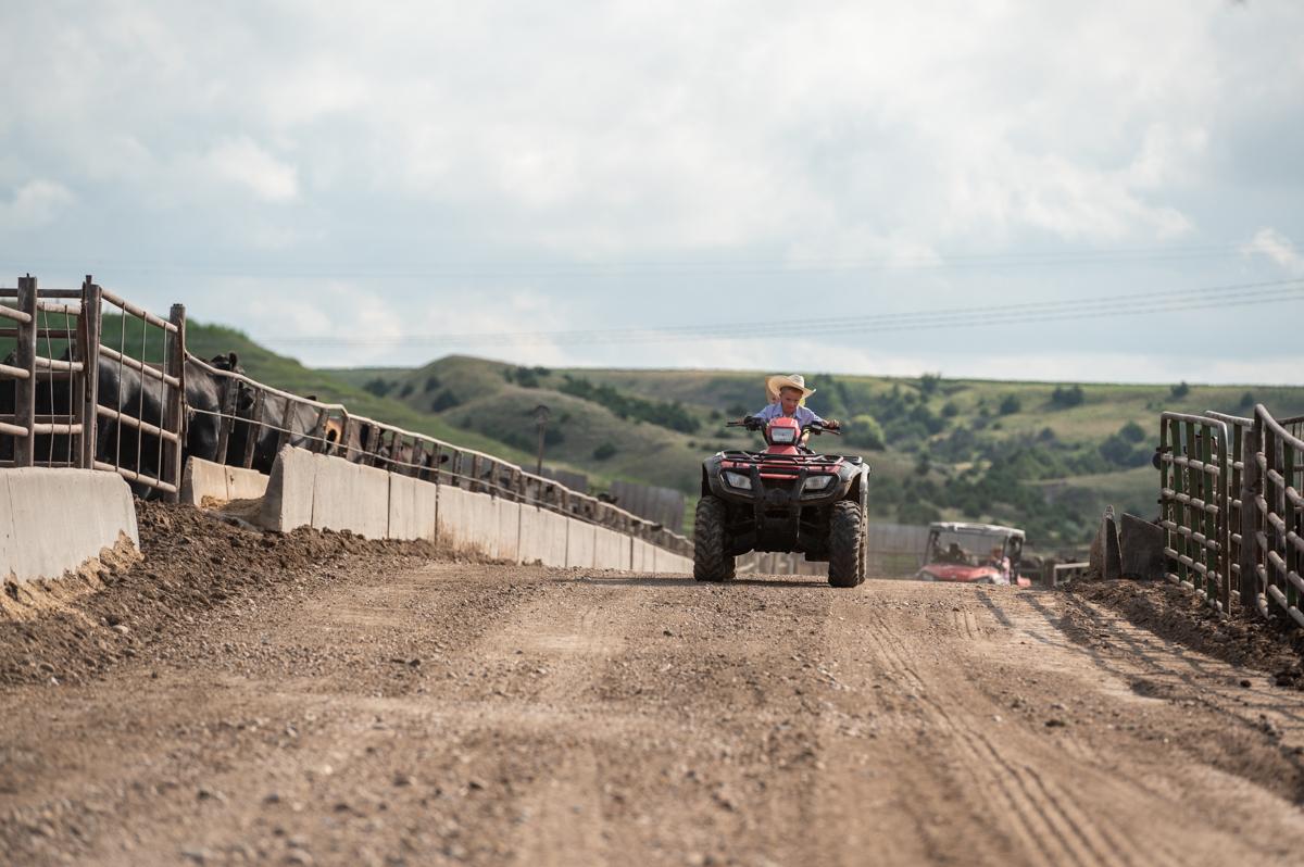 Boys on a 4-wheeler ride through a central Nebraska feedyard. Black Ink. Rookie
