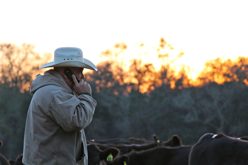 cowboy on phone
