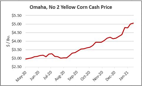 omaha corn cash price