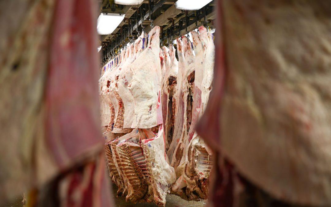 Select beef: Who wants it?